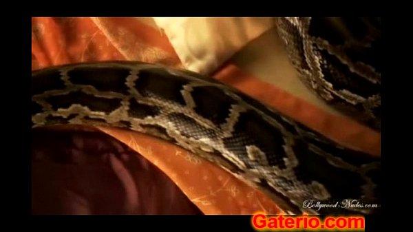 Mujeres tienen serpientes en el coño porno Mujer Hindu Jugando Desnuda Con Una Serpiente Videos De Zoofilia